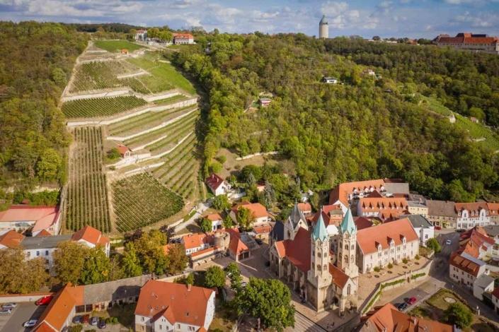 Weinberg   Luftfoto   Drohnenfoto   Fotografie