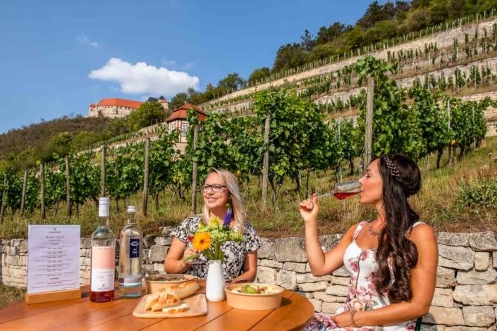 Frauen trinken Wein im Weinberg